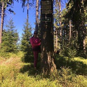Veronika Pastorková na vrcholu Zimný (21.4.2018 14:22)