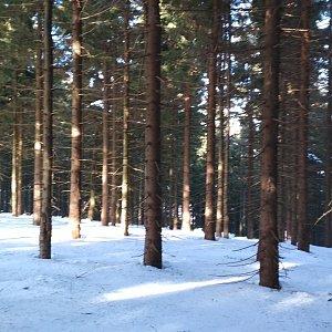Win Dous na vrcholu Zimný (15.1.2020 12:49)
