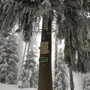 ŠenovKK na vrcholu Zimný (14.4.2021 16:38)
