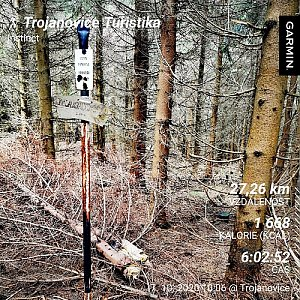 Medvěd Codiak na vrcholu Magurka (7.10.2020 13:20)