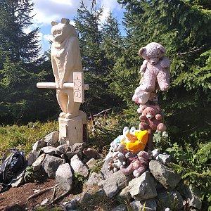 Smoula na vrcholu Medvědí vrch (3.9.2020 11:01)