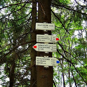 lubob na vrcholu Velký Polom (27.7.2007 15:50)