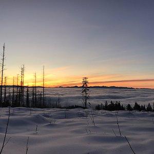 Sára na vrcholu Velký Polom (22.1.2020 7:00)