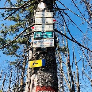 Nikola Kubiczova na vrcholu Velký Polom (11.4.2020 13:00)
