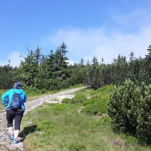 Martin a Jana Halamíčkovi na vrcholu Čihadlo (18.7.2021 17:49)