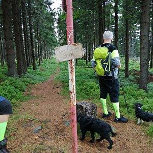 Blanka Holleschová na vrcholu Malý Polom (3.8.2019 13:30)