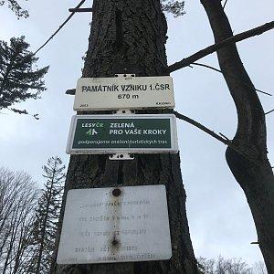 Veronika Spáčilová na vrcholu Kotař - Salaš (30.1.2021 14:08)