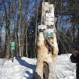 Lenka na vrcholu Kotař (19.2.2019 14:17)