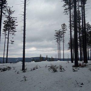 Bartek_na_cestach na vrcholu Mizerov  (25.2.2020 16:43)