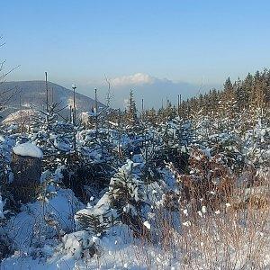 Lenka na vrcholu Kozubová (11.1.2021 14:00)