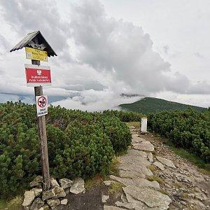 Šárka na vrcholu Malá Babia hora (28.8.2021 18:02)