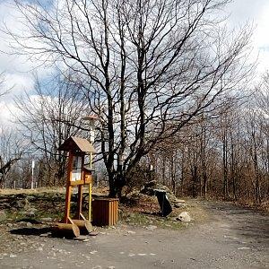 Iva Purmenská na vrcholu Kelčský Javorník (30.4.2021 13:04)