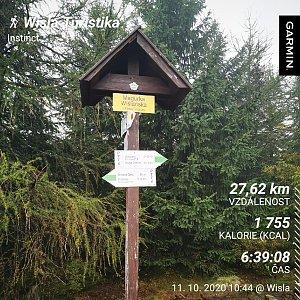 Medvěd Codiak na vrcholu Magurka Viślańska (11.10.2020 13:05)