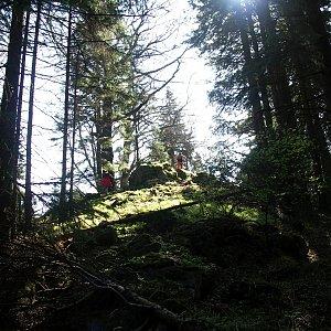 Pavel Martínek na vrcholu Nad Hospodárnicí (21.5.2005 9:34)