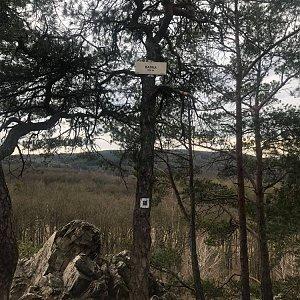 Ivetast na vrcholu Babka (10.4.2021 17:01)