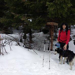 Jana Mayerová na vrcholu Slavíč (16.3.2019 16:18)