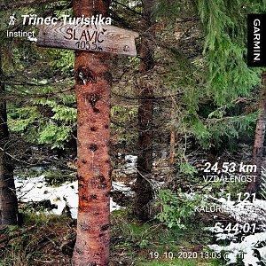 Medvěd Codiak na vrcholu Slavíč (19.10.2020 16:50)