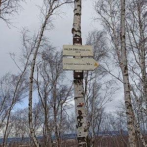 Karolína Moravcova na vrcholu Halda Ema (30.1.2021 10:25)