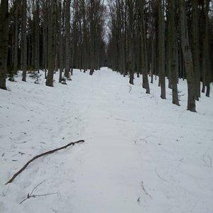 Bartek_na_cestach na vrcholu Kobylanka (14.2.2020 8:05)