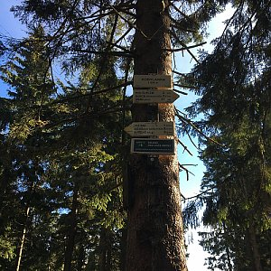 Jarek na vrcholu Kobylanka (25.10.2020 10:35)
