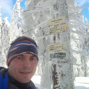 Puma na vrcholu Kobylanka (2019)