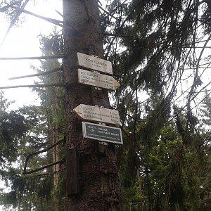 ŠenovKK na vrcholu Kobylanka (11.5.2019 18:25)