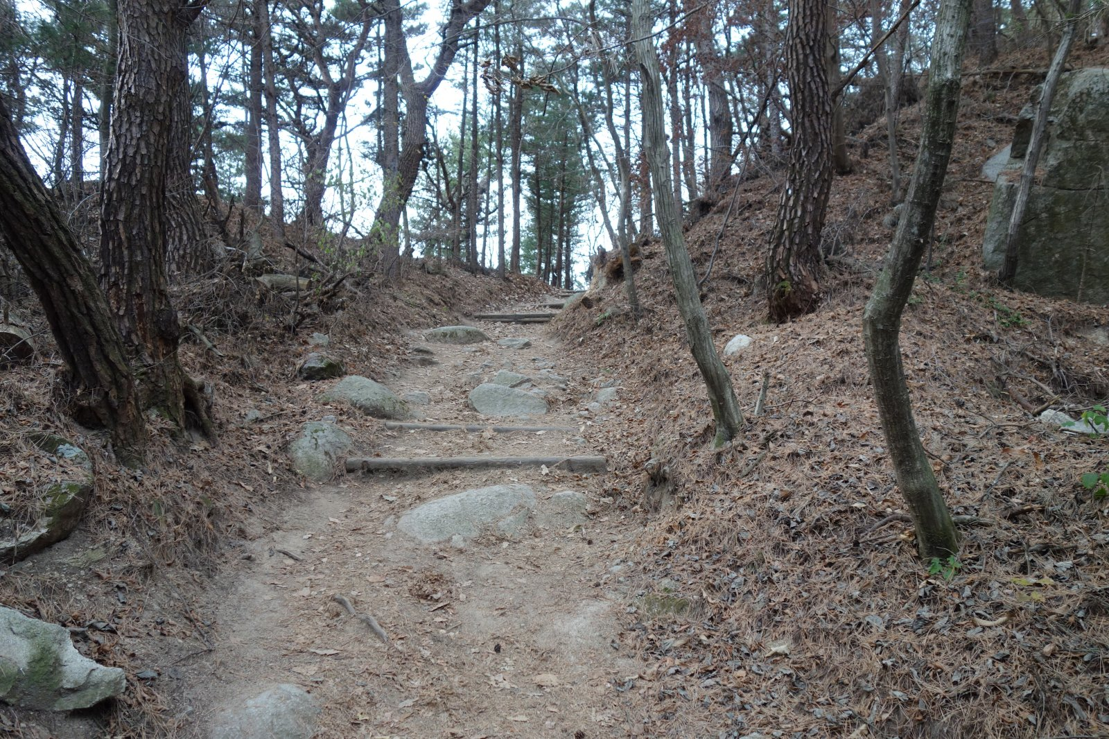 Patejl na vrcholu Tohamsan (28.11.2018 15:40)