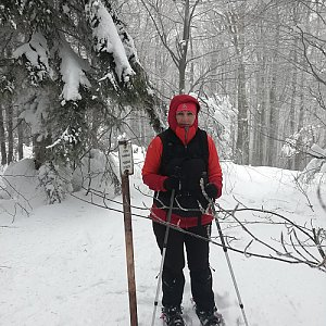 dana na vrcholu Nořičí hora (1.2.2019 14:20)