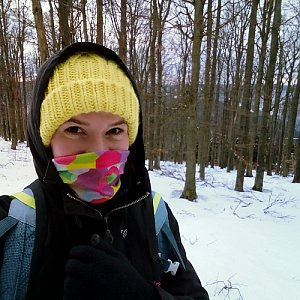 Andulka na vrcholu Nořičí hora (23.2.2019 13:09)