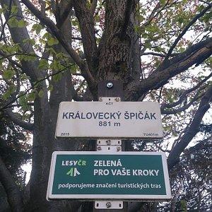 michalzhor na vrcholu Královecký špičák (26.5.2020 9:00)