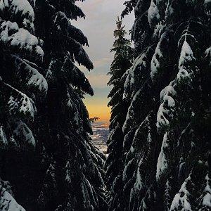 Ivča na vrcholu Smrk (30.12.2019 15:35)