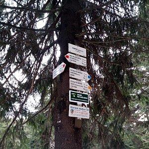 Milan Meravy na vrcholu Smrk (18.2.2020 8:51)