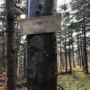 RŠind na vrcholu Velká Stolová (2.5.2020 9:25)