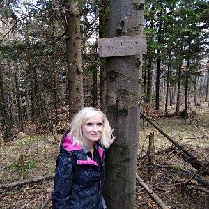 Ilona Mušálková na vrcholu Velká Stolová (22.4.2019 14:25)
