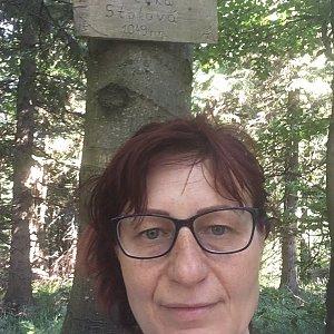 Kamila  Petrová na vrcholu Velká Stolová (6.7.2019 15:59)