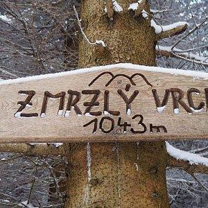 Jiřina Kružíková na vrcholu Zmrzlý vrch (10.1.2021 14:40)