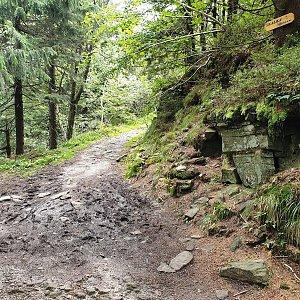 Petr Pepe Peloušek na vrcholu Skalka (na Pustevnách) (7.9.2019 11:13)