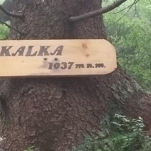 Arni na vrcholu Skalka (na Pustevnách) (23.7.2019 14:35)