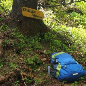 Jiřina na vrcholu Skalka (na Pustevnách) (6.6.2021 11:00)