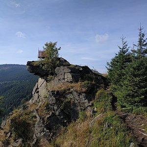 krupjan na vrcholu Medvědí hora (15.9.2021 9:46)