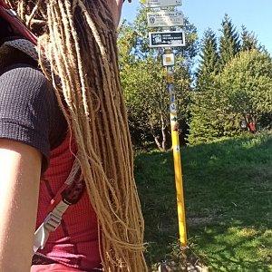 Adel na vrcholu Javorový vrch (28.8.2020 12:53)