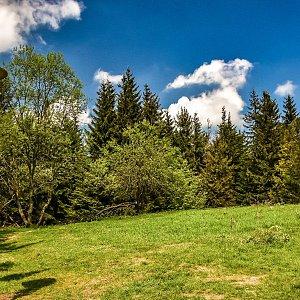 Jiřka Niedobová na vrcholu Javorový vrch (3.6.2021 9:30)
