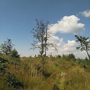 Anna na vrcholu Mrvova Kykula (9.8.2020 11:26)