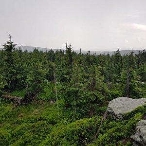 Iveta Válová na vrcholu Smědavská hora (26.6.2021)