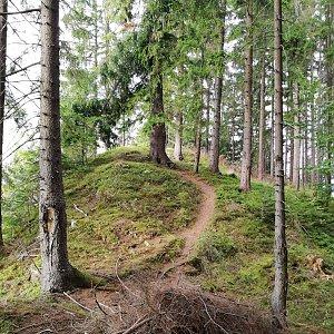 Jana F na vrcholu Skalka (hradiště Bílá) (13.9.2021 17:09)