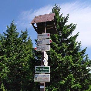 ŠenovKK na vrcholu Jelenka (6.8.2019 12:11)