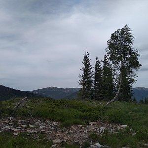 Eliška na vrcholu Mechovinec (15.6.2021 17:00)