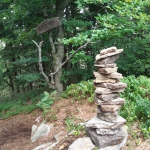 Hancula na vrcholu Burkův vrch / Burkov vrch (21.8.2021 16:21)