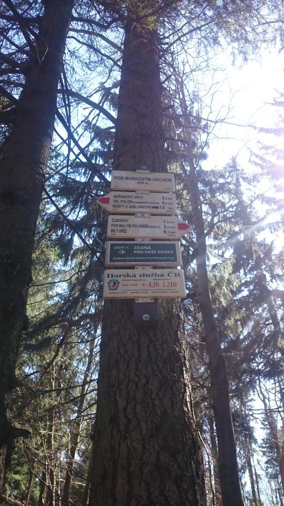 Pajulka na vrcholu Burkův vrch (21.4.2018 14:46)