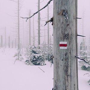 Michelle Sýkorová na vrcholu Burkův vrch (15.2.2020 12:05)
